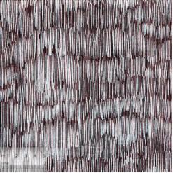 Ткань американская для пэчворка, IN-01347
